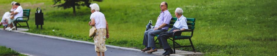 older people meet in a park